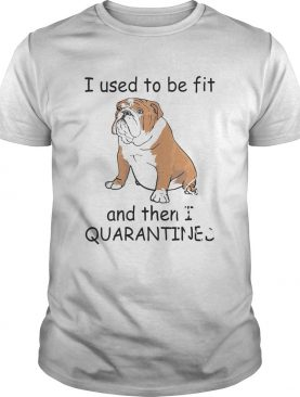 I Used To Be Fit And Then I Quarantined shirt
