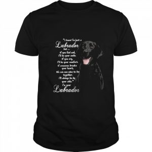 I Know I'm Just A Labrador But If You Feel Sad I'll Be Your Smile shirt
